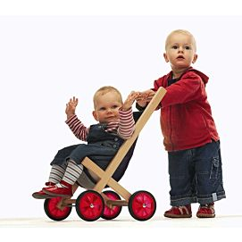 BUGGY HOUT